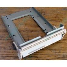 Заглушка для корзины SCSI дисков 55.59903.011 для серверов HP Compaq (Махачкала)