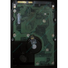 HP 454228-001 146Gb 15k SAS HDD (Махачкала)